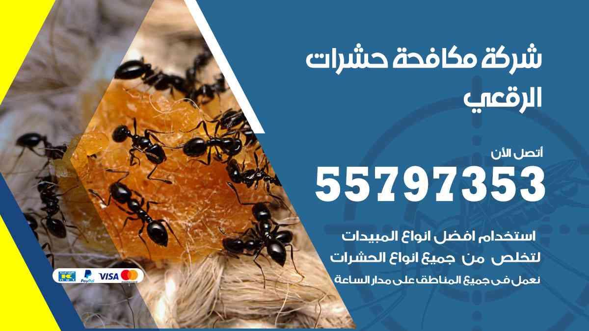 شركة مكافحة حشرات وقوارض الرقعي